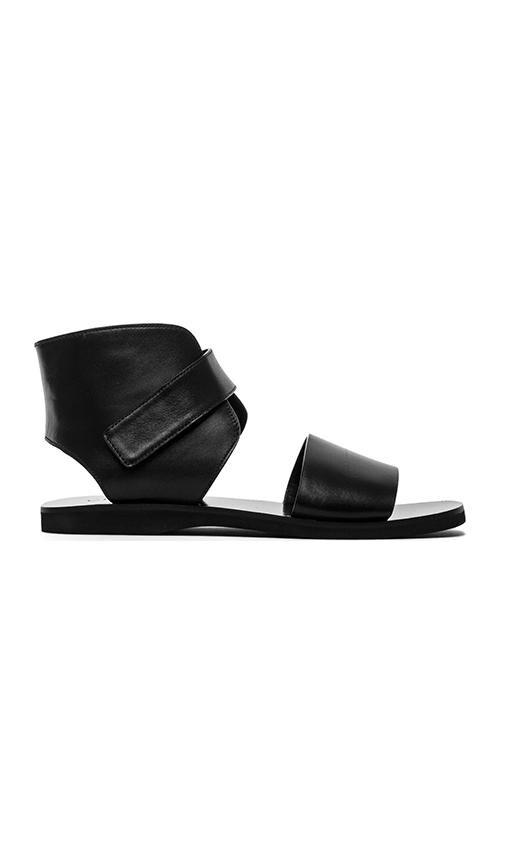 Sage Sandal