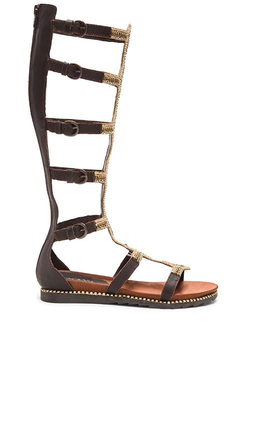 Velora Sandal
