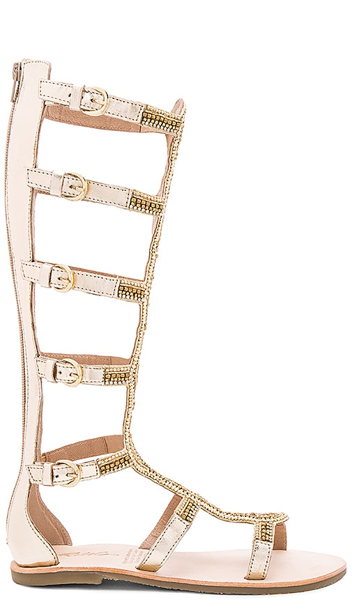 Rebels Velocity Sandal in Gold