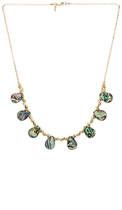 Vanessa Mooney Jackson Necklace in Gold