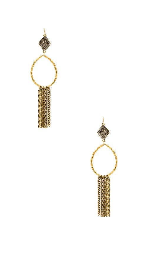 Hailey Hoop Earrings