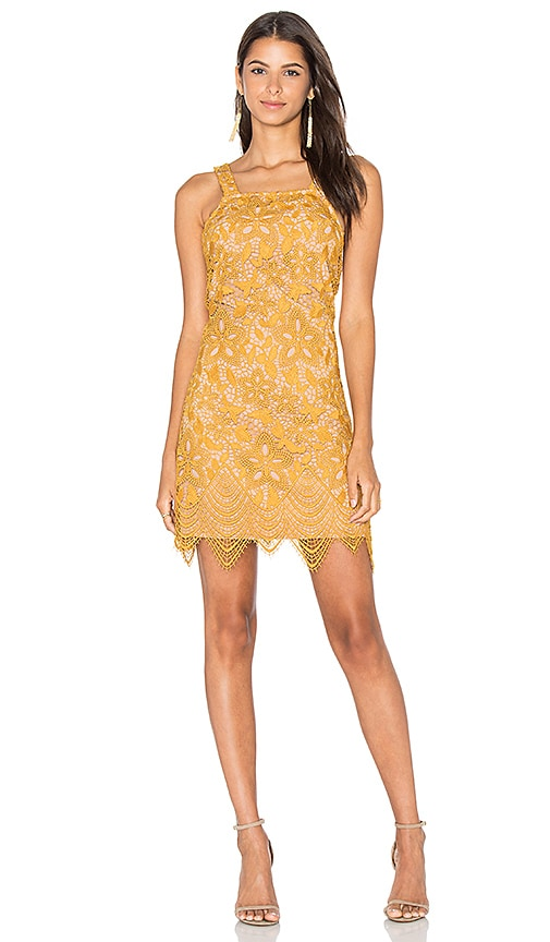 WAYF Orleans Lace Mini Dress in Yellow