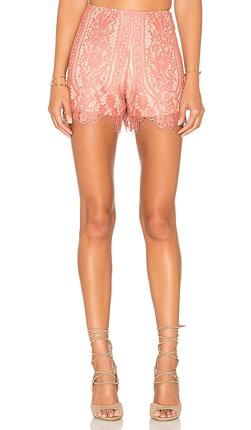 WAYF Dew Drop Short in Rose