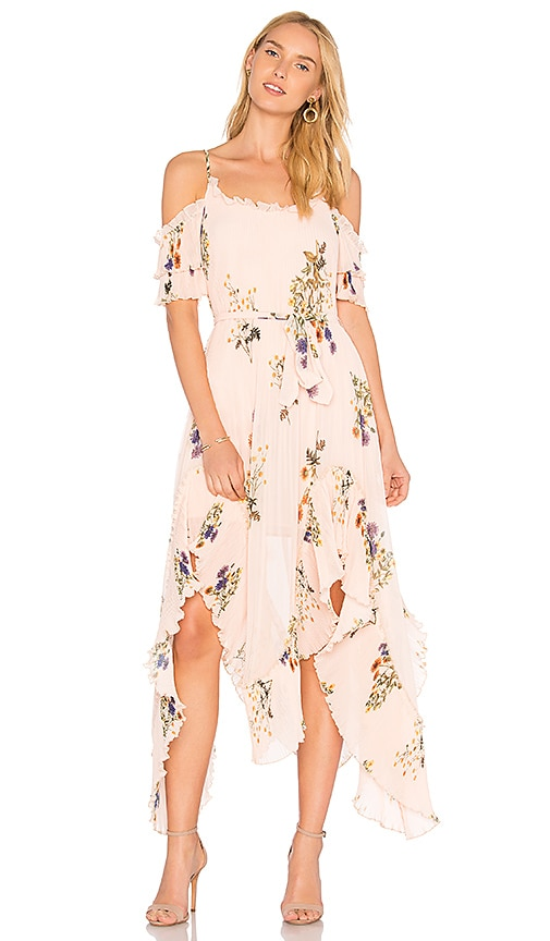 We Are Kindred Country Field Maxi Dress in Pink