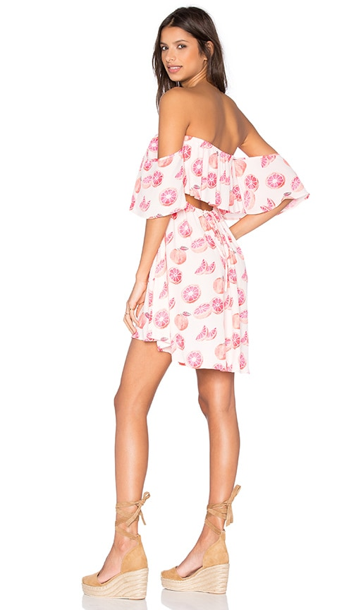 Wildfox Couture Grapefruit Dress in Pink