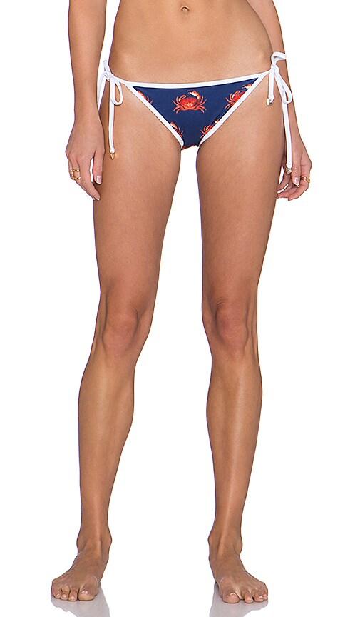 Wildfox Couture Crabby Bikini Bottom in Multi