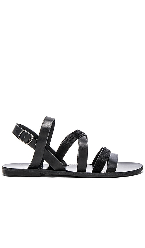 Warm Creature Aurora Cow Hair Sandal in Black