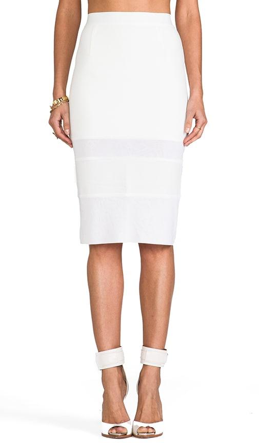 I Like It Sheer Skirt
