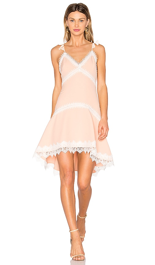 X by NBD Paris Dress in Blush