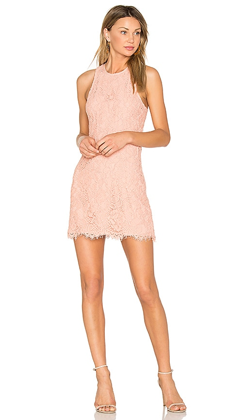 X by NBD Vera Dress in Blush