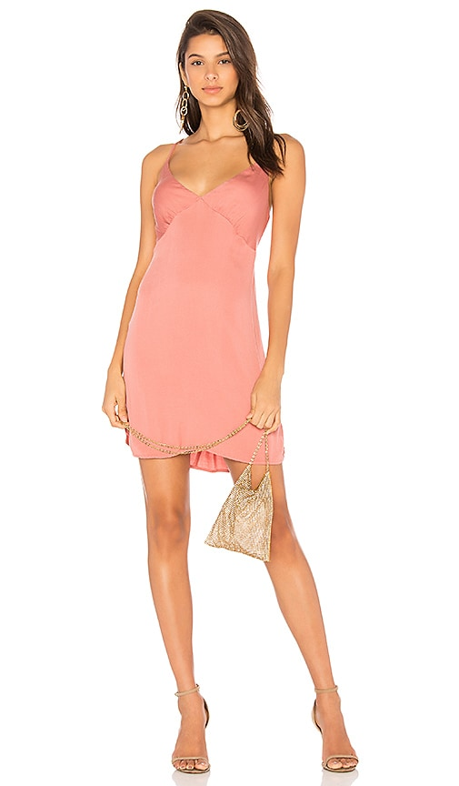 Young, Fabulous & Broke Lexington Dress in Pink