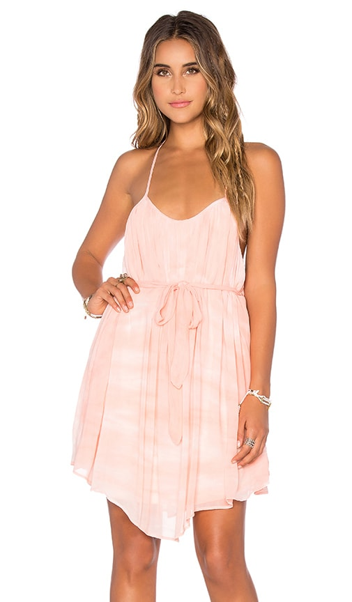 Young, Fabulous & Broke Madrina Dress in Peach