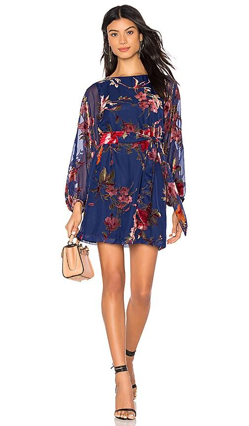 4716e2657fae9 Yumi Kim Bellflower Dress in Serenade Velvet Burnout
