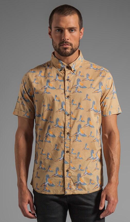 Pirate S/S Shirt