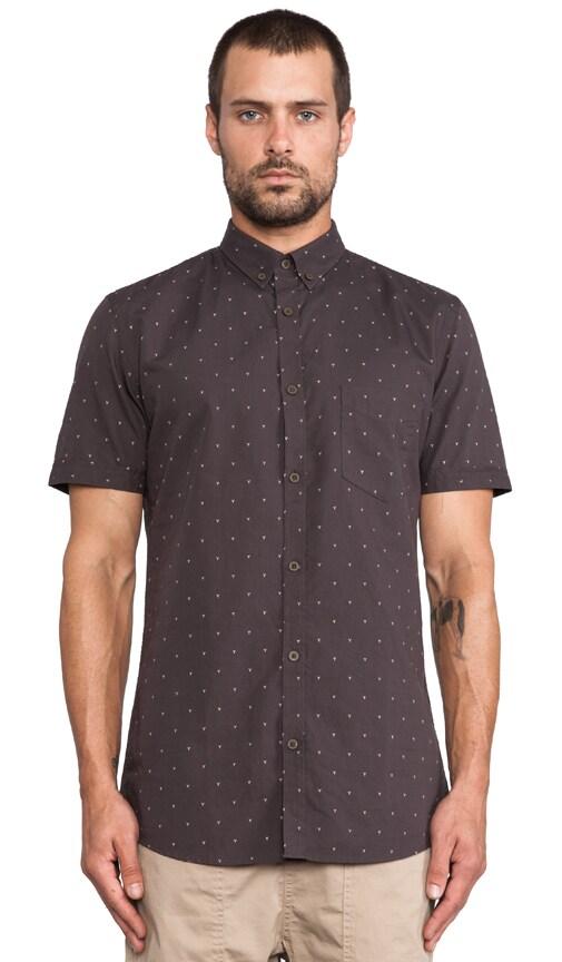 Why Shirt