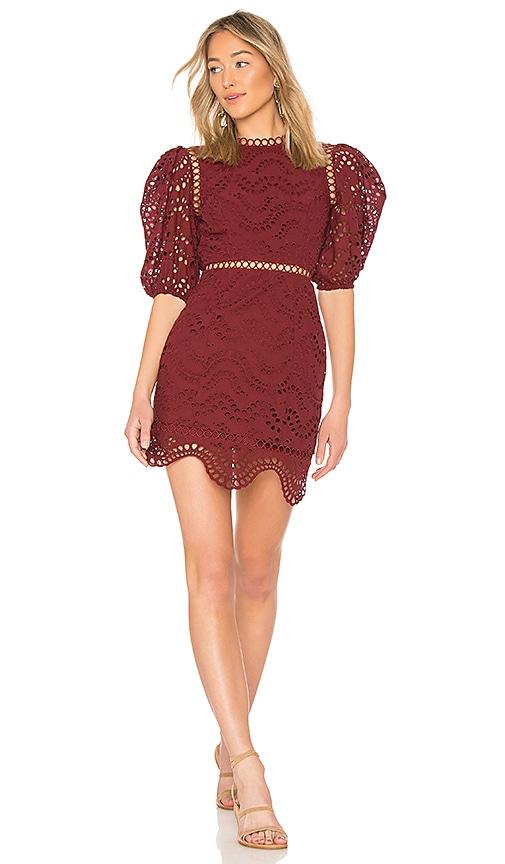 Zimmermann Jaya Wave Mini Dress in Burgundy