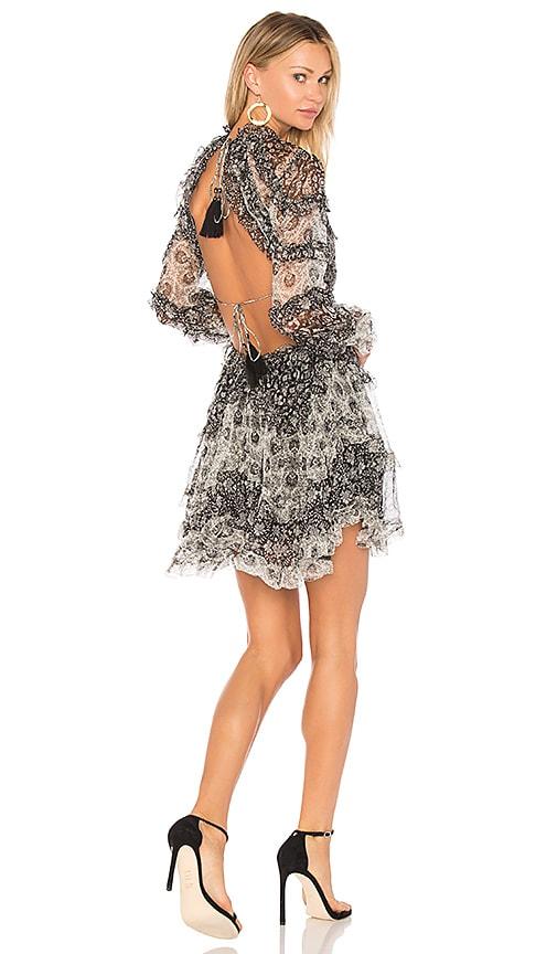 Zimmermann Divinity Ruffle Dress in Black