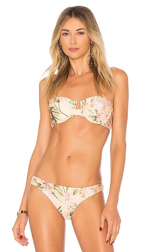 Zimmermann Prima Balconette Bikini Top in Pink