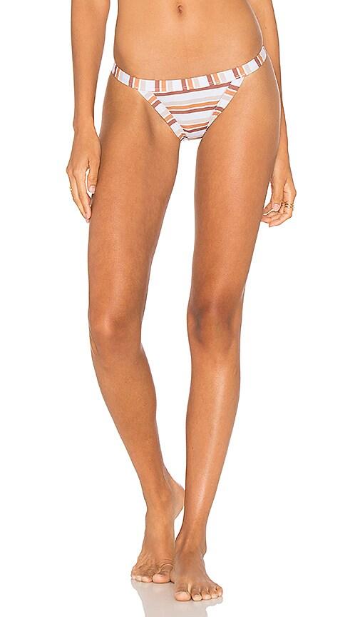 Terra Firma Bikini Bottom