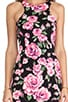 Valentine Racer Dress, view 5, click to view large image.