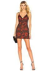 About Us Allana Brocade Mini Dress in Red & Black