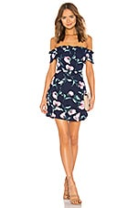 About Us Dulipa Dress in Navy Floral