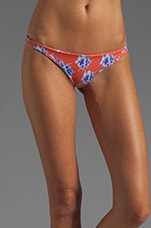 Axel Skimpy Bottom in Vintage Aloha
