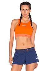 TOP CROPPED CLIMACHILL