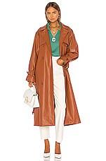 Aeryne Abalone Jacket in Brown Topaz