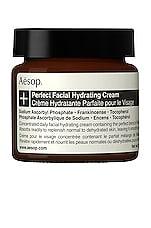 Aesop Perfect Facial Hydrating Cream