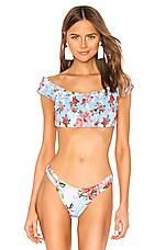 Agua Bendita Celia Bikini Top in Cotton Candy