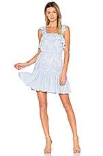 aijek Maria Flutter Sleeve Dress in Blue