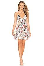 aijek Gabriella Floral Mini Dress in Floral