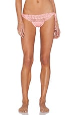 Daring Lace Bikini Bottom in Blush