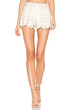 Amaris Short in Cream
