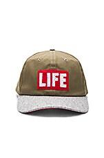 Altru x LIFE Hat in Olive & Grey