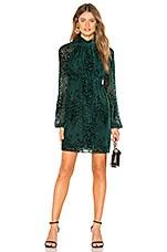 A.L.C. Nadia Velvet Dress in Evergreen