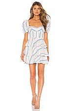 Amanda Uprichard Viceroy Dress in Viceroy Stripe