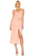 AMUSE SOCIETY Driftwood Sleeveless Dress in Peach