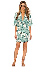 AMUSE SOCIETY Island Oasis Button Up Dress in Spa Green
