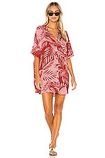AMUSE SOCIETY Shady Palms Dress in Rouge