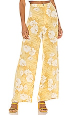 AMUSE SOCIETY Shady Shack High Waisted Pant in Ginger