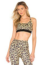 Adam Selman Sport Core Sports Bra in Honey Leopard
