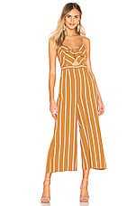ASTR the Label Dylan Jumpsuit in Gold & White Stripe