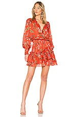 Alexis Rianna Dress in Botanical Red