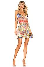 Alexis Sirsha Dress in Gogo Multi