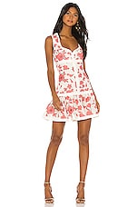 Alexis Lilou Dress in Spring Blossom