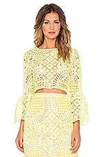 Alexis Vito Ruffle Sleeve Lace Crop Top in Aurora