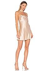 Backstage Naomi Dress in Mink