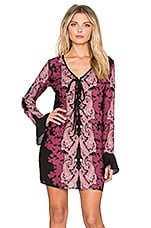 Band of Gypsies Lace Front Mini Dress in Black & Purple